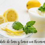 Sorbet de Limão com Thermomix