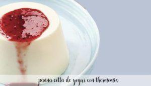 Panna cotta de iogurte com Thermomix