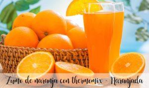 Suco de laranja com thermomix – Laranja