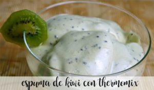 Espuma de kiwi com thermomix