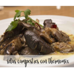 Cogumelos do campo com thermomix