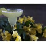 Como fazer um coquetel Margarita no Thermomix