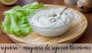 Sojanesa – Maionese de soja com termomix
